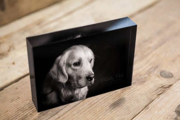 Acryl fotoblok hondenfotografie
