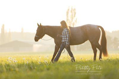 paardenfotografie op locatie