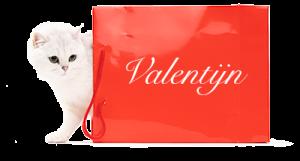 fotoshoot Valentijn
